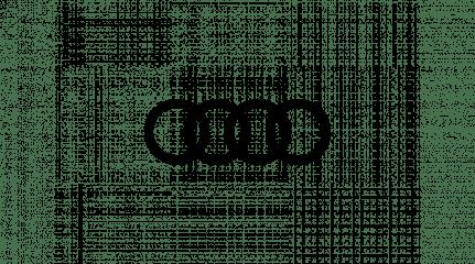 Audi_Logo_Onze_Voorraad