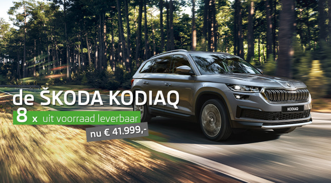 homepage-skoda-kodiaq-klein