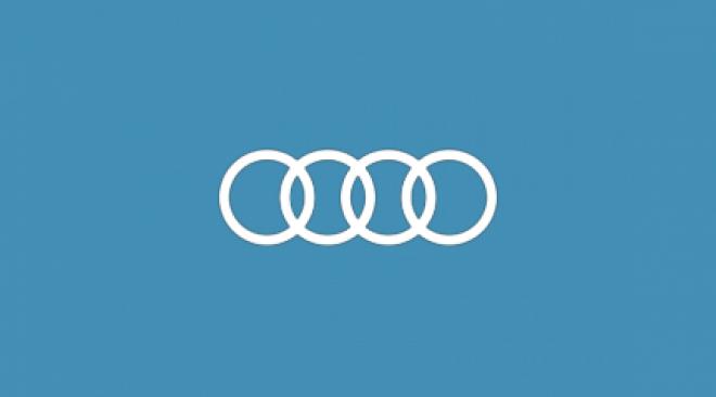 Audi_logo_economy_service